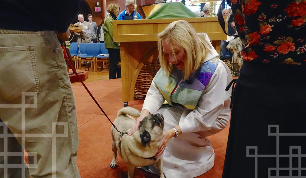 blessing-of-pets-st-marks-capitol-hill-dc