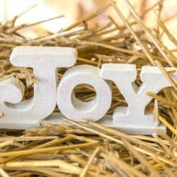 Joy message Christmas Festival Fund St Marks Capitol HIll